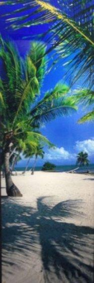 On The Beach (Islamorada, Florida) Panorama by Peter Lik