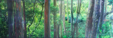 Painted Forest 2M Super Huge Panorama - Peter Lik