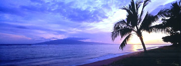 Island Escape (Baby Beach, Maui, Hawaii) Panorama by Peter Lik