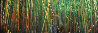 Bamboo (Pipiwai Trail, Hana, Hawaii) 1.5M Huge Panorama by Peter Lik - 1