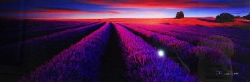 Splendour Panorama - Peter Lik