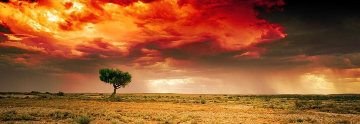 Dreamland (InnamIncka, South Australia) 1.5M Huge Panorama - Peter Lik