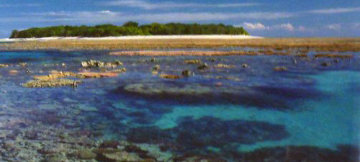 Coral Island (Small edition) Lady Muskgrave Island  Panorama by Peter Lik