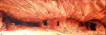 Fire Rock (Cedar Mesa, Utah) Panorama - Peter Lik