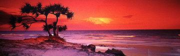 Pandanus Twilight (Frazier Island) (small edition) Panorama by Peter Lik