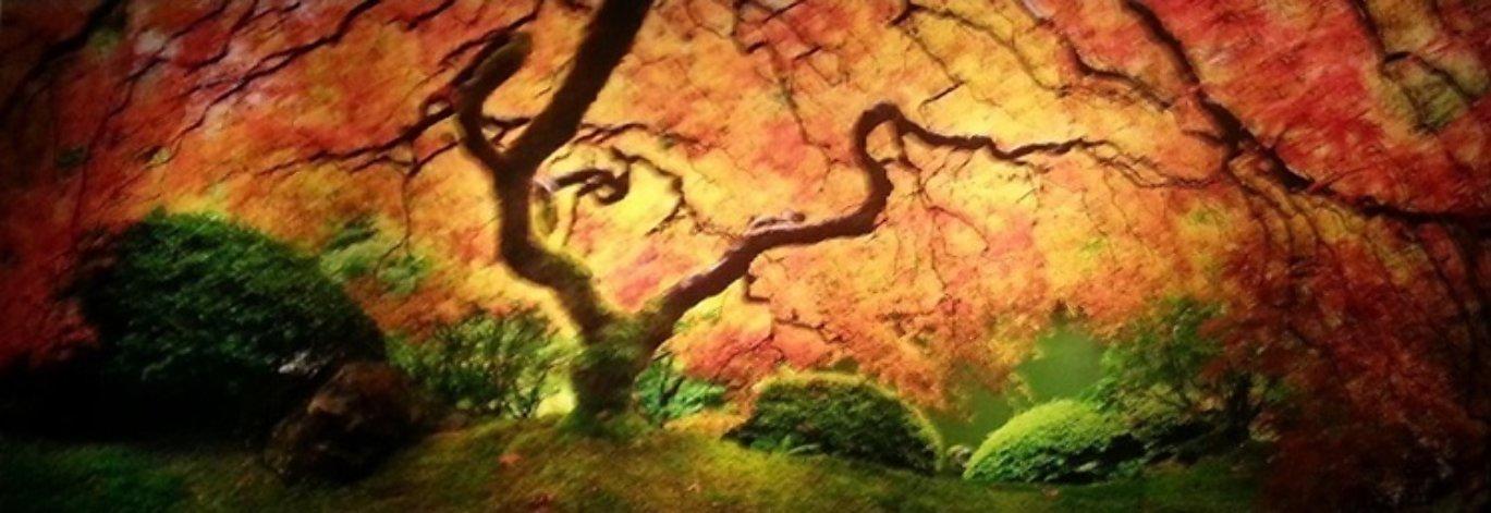 Tree of Zen Panorama by Peter Lik