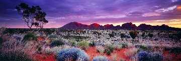 Painted Skies (Kata Tjuta National Park) Australia Panorama by Peter Lik