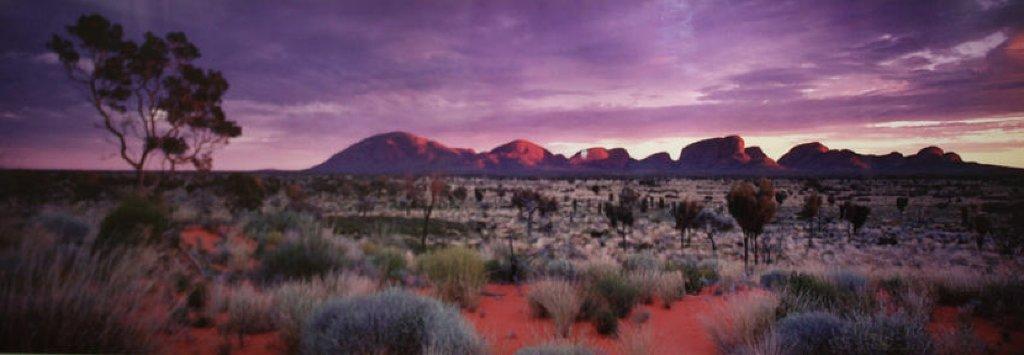 Painted Skies (Kata Tjuta National Park) Australia Panorama by Peter Lik