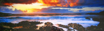 Genesis (Hana, Hawaii) 1.5M Huge Panorama - Peter Lik