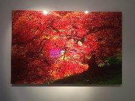 Enchantment 1.5M Huge Panorama by Peter Lik - 1