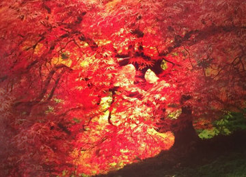 Enchantment 1.5M Huge Panorama - Peter Lik