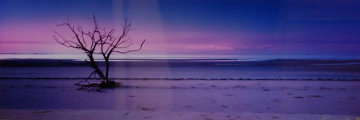 Solitude AP  (Cape York, Queensland) Panorama by Peter Lik
