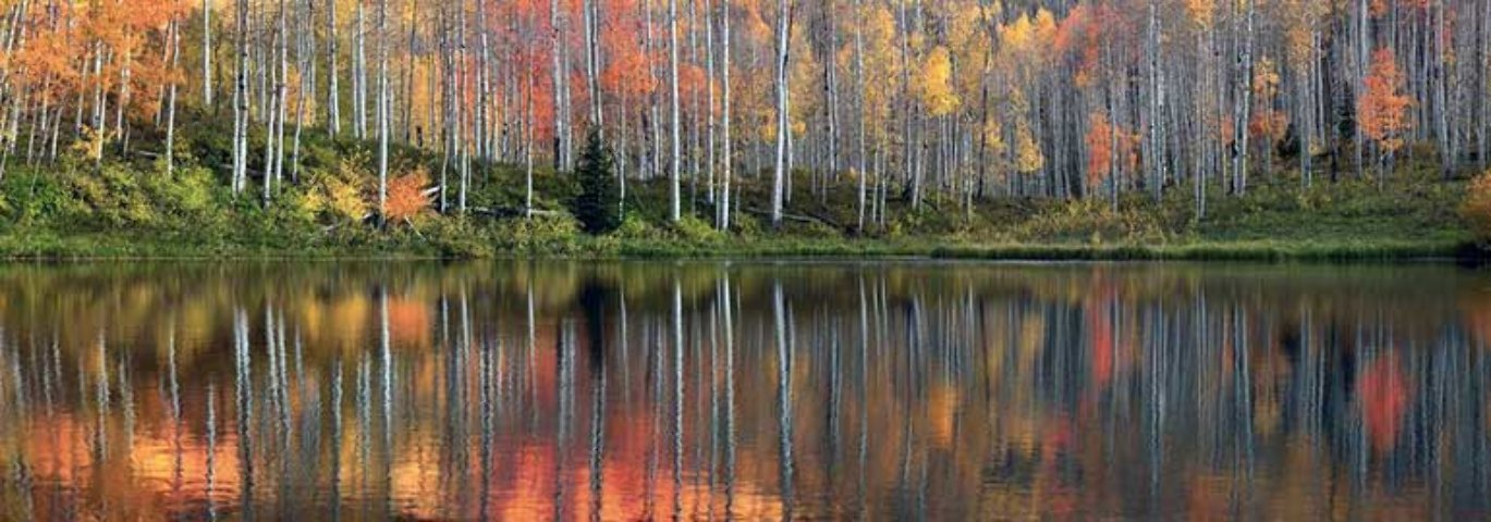 Autumn Echoes  Panorama by Peter Lik