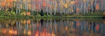 Autumn Echoes  Panorama - Peter Lik