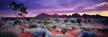 Painted Skies (Kata Tjuta National Park) Panorama - Peter Lik