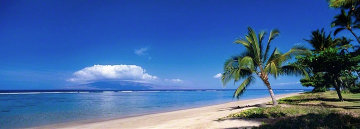 Aloha Shores Panorama by Peter Lik