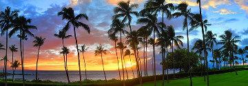 Pacific Nights  1.5M Huge Panorama - Peter Lik