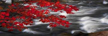 River of Zen (Telluride, Colorado)  Panorama by Peter Lik