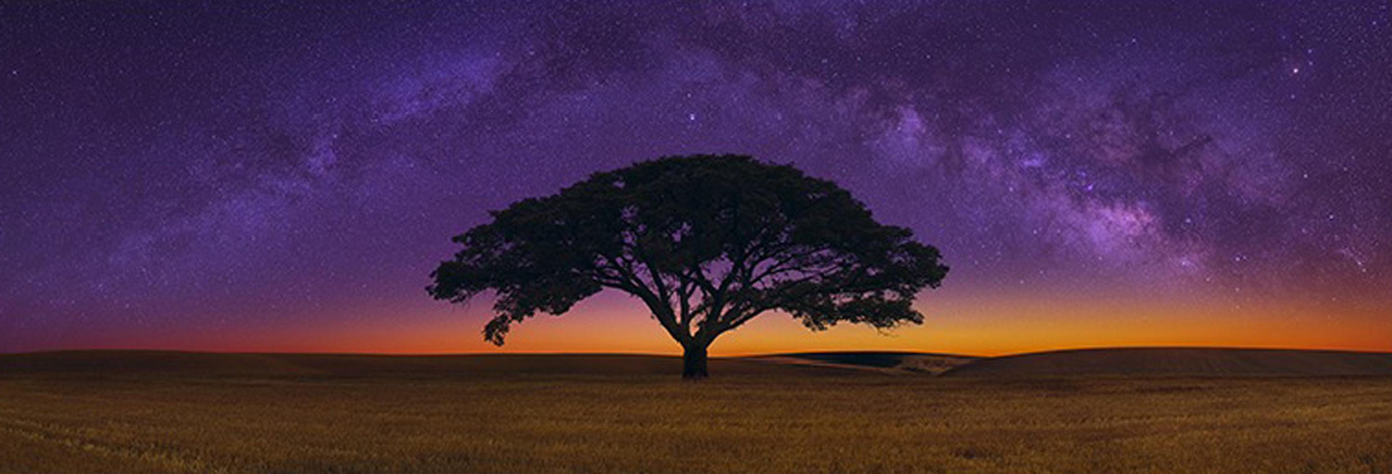 Celestial Dreams 1.5M Huge Panorama by Peter Lik