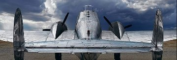 Twin Beech 1.5M Huge Panorama - Peter Lik
