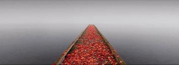 Secret Morning  Panorama by Peter Lik