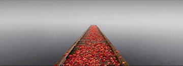 Secret Morning  Panorama - Peter Lik