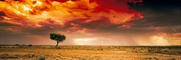 Dreamland Innamincka, South Australia  Panorama by Peter Lik