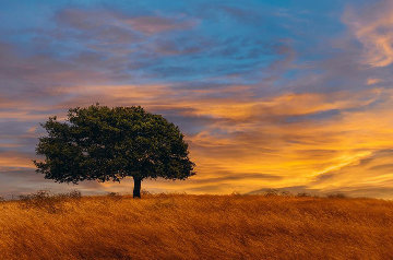 Blazing Skies  Panorama - Peter Lik