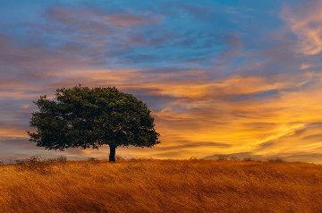 Blazing Skies  Panorama by Peter Lik