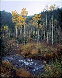 Aspen Creek Panorama by Rodney Lough, Jr.  - 0