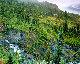 Misty Fjords Panorama - Rodney Lough, Jr.