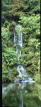 Waterfall in the Garden Panorama - Rodney Lough, Jr.