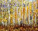 Glory of God's Light Panorama - Rodney Lough, Jr.