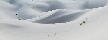 Silk   Huge  Panorama - Rodney Lough, Jr.