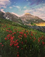 Yankee Boy in Red 2008 Panorama by Rodney Lough, Jr.  - 0