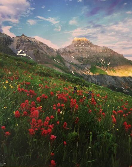 Yankee Boy in Red 2008 Panorama by Rodney Lough, Jr.