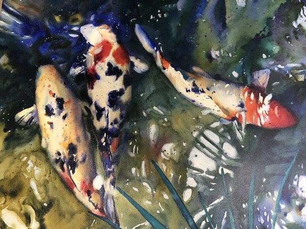 Untitled Koi Watercolor 1997 28x39  by Kent Lovelace