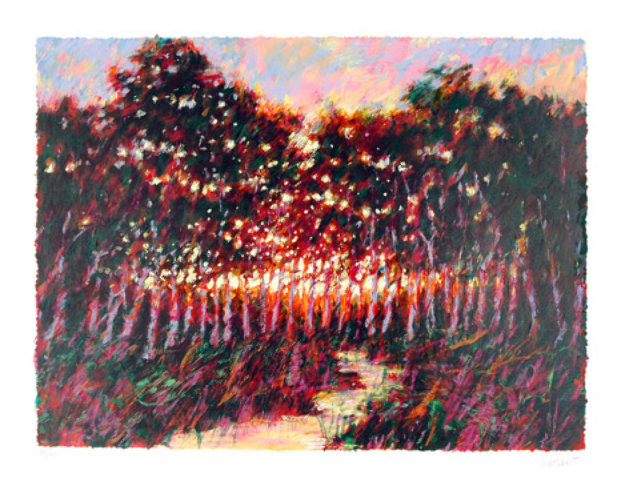 Forest  at Dusk 1980 Limited Edition Print by Aldo Luongo