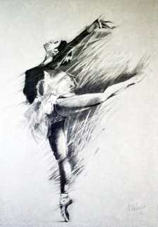 Ballerina Suite of 3 1989 Limited Edition Print by Aldo Luongo