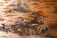 Score to Settle, Disturbed Jumbo, Reclining Cheetahs 1984, Set of 3 Prints Limited Edition Print by Rob MacIntosh - 1