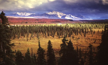 Season Passing Panorama by Thomas Mangelsen