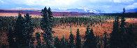 Season Passing (Denali)  AP 1.5M Super  Huge Panorama by Thomas Mangelsen - 0
