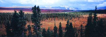 Season Passing (Denali)  AP 1.5M Super  Huge Panorama - Thomas Mangelsen