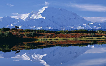 Reflections of Denali Huge Panorama - Thomas Mangelsen
