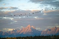 Autumn Passage - Tetons  Panorama by Thomas Mangelsen - 1