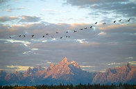 Autumn Passage - Tetons  Panorama by Thomas Mangelsen - 0