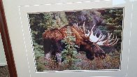 Monarch of the Forest  Panorama by Thomas Mangelsen - 3