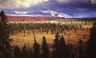 Season Passing Panorama by Thomas Mangelsen - 0