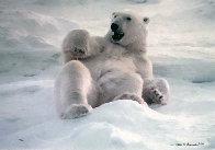 Feels Good - Polar Bear 1990 Panorama by Thomas Mangelsen - 0