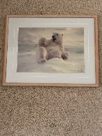 Feels Good - Polar Bear 1990 Panorama by Thomas Mangelsen - 1
